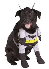 Dog Halloween Costumes Kids Easy Halloween Costumes Adults Kids