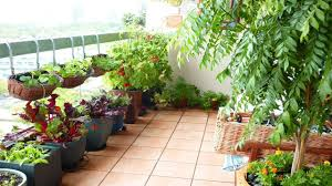 Ideas For Balcony Garden Charming Balcony Garden Designs Ideas Small Terrace