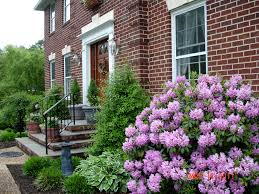 Small Shrubs For Front Yard - small shrubs and colorful perennials in border beside lawn weeping