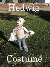 pickup some creativity hedwig costume