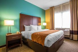 Comfort Suites Downtown Chicago Comfort Suites O U0027hare Airport In Chicago Hotel Rates U0026 Reviews