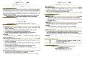 sample federal government resume resume formats jobscan gagut nobel prize letters sample civilian sample civilian and federal resumes resume valley resume