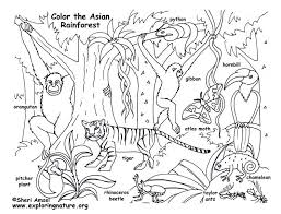 free coloring page of the rainforest rainforest coloring pages unique free rainforest coloring pages free