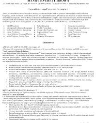 Solicitor Resume Use These Legal Cv Templates To Write A Effective Resume To