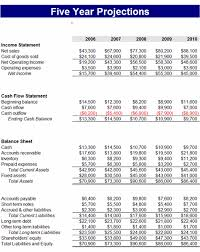 5 year business financial projections business pinterest 5