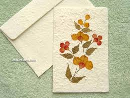 greeting cards wholesale wholesale greeting cards with pressed flowers jedicreations