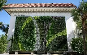 gorgeous green wall adorns palm beach shopping center inhabitat