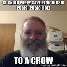Cuckold Meme - cuckold pappy gave pediculosis pubis pubic lice to a crow shitty