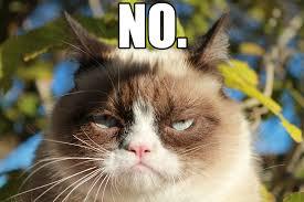 No Meme Tumblr - grumpy cat memes no image memes at relatably com