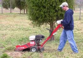 stump grinder rental near me rental stump grinder archives barts tree service