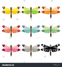 dragonfly different color set on white stock vector 611252345