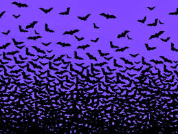 halloween backgrounds free halloween background with bats bootsforcheaper com