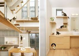 interior design coolest cat friendly house design from japan