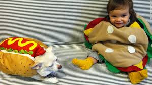 Family Dog Halloween Costumes Halloween Howlers Dressing Dogs Cnn