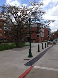 of oregon eugene visco bollards and lighting