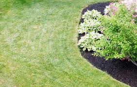 How To Mulch Flower Beds Sheet Mulching Is The Easiest Way To Convert Lawn To Garden