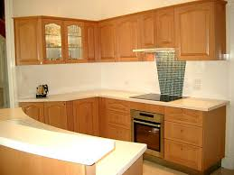 Kitchen Pantry Designs Pictures Pantry Cupboard Plans New Ideas Kitchen Pantry Cabinet Kitchen