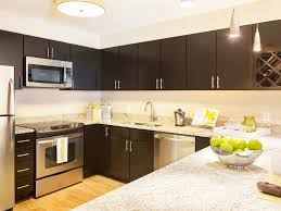 Espresso Kitchen Cabinets Kitchen Espresso Kitchen Cabinets And 26 Fabulous Remodeling