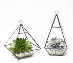 geometric pyramid glass vase succulent terrarium by dingading