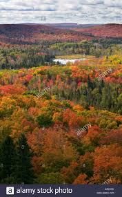 Minnesota mountains images Sawtooth mountains in autumn from leveaux mountain superior jpg