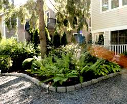 Flowers For Backyard by Shade Loving Plants U0026 Flowers For Your Front U0026 Back Yards