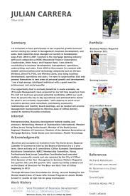 Photo Resume Examples by Vice President Of Business Development Resume Samples Visualcv