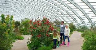 National Botanical Garden Of Wales Botanic Garden Of Wales Visitor Numbers With 20 000