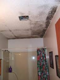 how to get rid of mold and mildew in bathroom areas