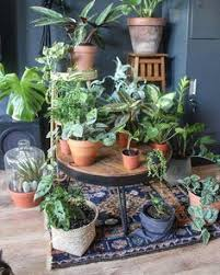 Urban Jungle Living And Styling by Livingroom Dark Lambrisering Urban Jungle My Urban Jungle House