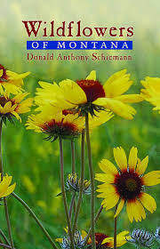 montana native plants wildflowers of montana donald anthony schiemann 9780878425044