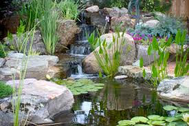 Aquascape Inc Aquascape Your Landscape Small Ponds Pack A Punch