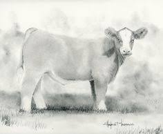 longhorn cattle drawing sketch horse drawings pinterest