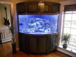 astounding fish tank headboard photo decoration ideas surripui net