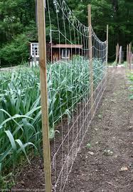 7 diy vertical gardening techniques for healthier veggies hobby