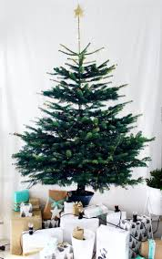 8181 best christmas images on pinterest christmas ideas
