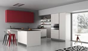 cuisine contemporaine grise cuisine et grise qui incarne l idée d une vie moderne