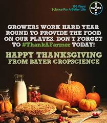 growers work year to provide the food on your plates