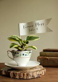Miniature Tea Cups Favors by Diy Teacup Planter Favors Ruffled