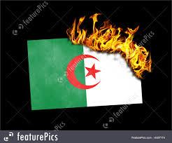 Algerian Flag Flag Burning Algeria Image