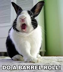 Do A Barrel Roll Meme - bunny do a barrel roll meme frontier