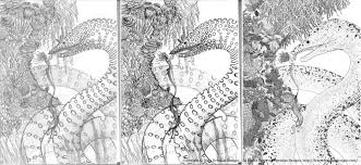 digital art mermaid and giant eel progress 1 u2014 deridias designs