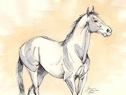 blue horse art original ink and watercolor sketch painting u2026 flickr