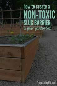 Raised Garden Beds How To - get rid of slugs gardening