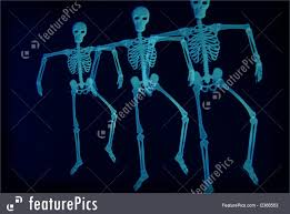 Dancing Halloween Skeleton by Picture Of Dancing Skeletons