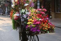 dillons floral dillons florist dillonsflorist on