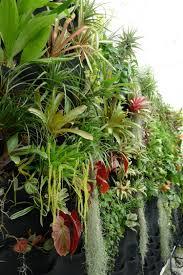 decoration petit jardin aménagement jardin avec une touche d u0027exotisme 50 photos