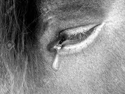 sad photography of eye with teardrop stock photo picture
