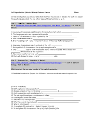 Cellsalive Com Worksheet Cell Reproduction Meiosis Mitosis Internet Lesson Name
