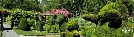 green animals topiary garden newport mansions
