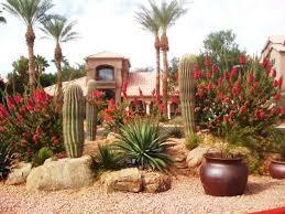 Desert Landscape Ideas by Best 25 Arizona Landscaping Ideas On Pinterest Desert